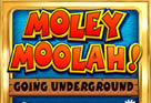 Moley Moolah: Going Underground